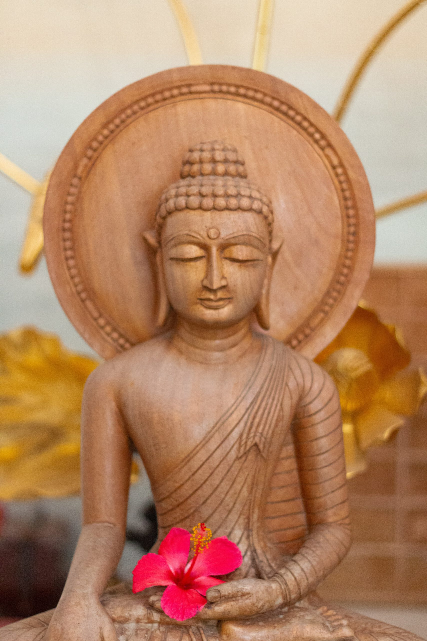 Dharma-Studium in der Online Dharma Gruppe. Dharma ist die Beschreibung des Weges zu dem, was in buddhistischen Traditionen als Erwachen bezeichnet wird.